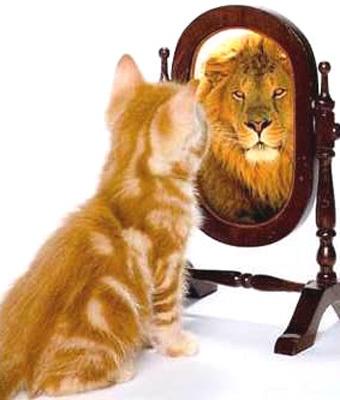 Samopoštovanje